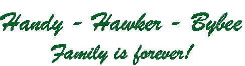 Handy hawker Biebe